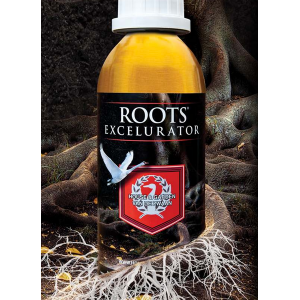 Roots Excelurator 250ml | House & Garden Products  | House & Garden Additives | Home