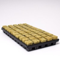 25mm x 50 Small Cubes in Tray Cultilene Rockwool | Propagation | Rooting Gel, Scalpels & Substrates