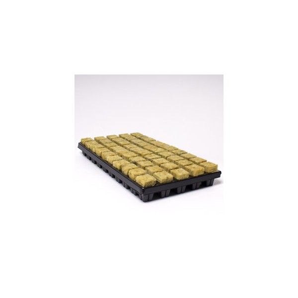 Small Cubes And Limited P: 25mm X 50 Small Cubes In Tray Cultilene Rockwool