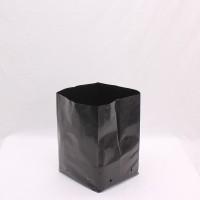 PB 18 x 100 bags  (10L)  | Pots, Trays & Planter Bags  | Planter Bags