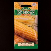 Sweet Corn - Early Honey Sweet | Seeds | D.T. Brown Vegetable Seeds | Watkins Vegetable Seeds