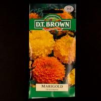 Marigold - Crackerjack | Seeds | Watkins Flower Seeds
