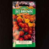 Marigold - Sparky Mixed | Seeds | Watkins Flower Seeds