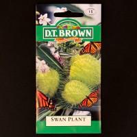 Swan Plant | Seeds | Watkins Flower Seeds