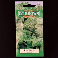 Lettuce - All Year | Seeds | D.T. Brown Vegetable Seeds | Watkins Vegetable Seeds