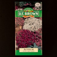 Alyssum - Pastel Carpet Mixed | Seeds | D.T. Brown Flower Seeds