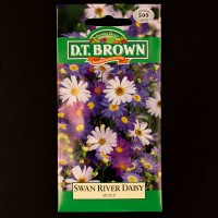 Swan River Daisy - Mixed | Seeds | Watkins Flower Seeds | D.T. Brown Flower Seeds