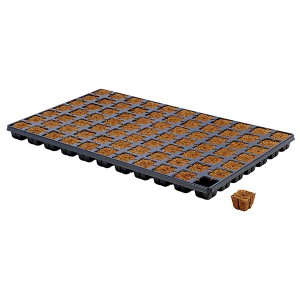Eazy Plug Tray 77 | Home | New Products | Propagation | Rooting Gel, Scalpels & Substrates