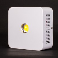 Cree LED 1 x 200W Unit | LED Grow Lights | LED Lights | New Products | Specials