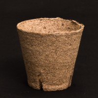 Jiffy Peat Pot 80mm | Propagation & Cloning | Pots, Trays & Planter Bags  | Pots | Rooting Gel, Scalpels & Substrates