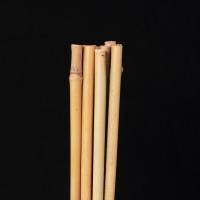 Stakes Bamboo Large x 10  | Accessories | Plant Support