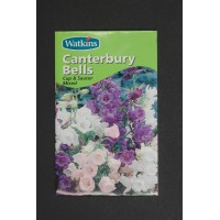 Canterbury Bells Cup and Saucer mixed | Seeds | Watkins Flower Seeds