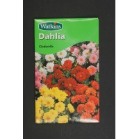 Dahlia Cinderella | Seeds | Watkins Flower Seeds