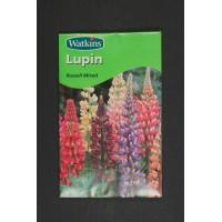 Lupin Russell Mix | Seeds | Watkins Flower Seeds