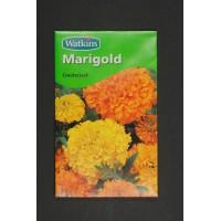 Marigold Crackerjack | Seeds | Flowers