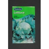 Lettuce Webbs Wonderful | Seeds | Watkins Vegetable Seeds