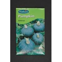 Pumpkin Buttercup | Seeds | Watkins Vegetable Seeds
